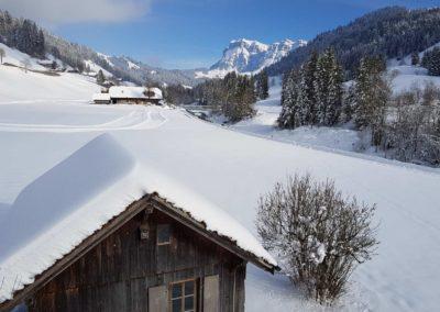 Berger-Eriz im Winter - loipe